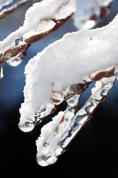 Photograph - Ice And Snow-5539 by Steve Somerville