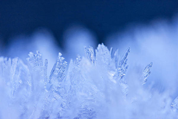 Photograph - Ice Blue by Peggy Collins