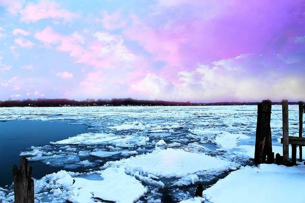 Photograph - Ice Chunks by Rebecca Frank