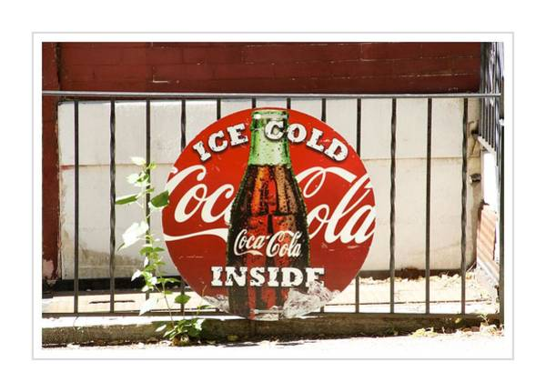 Photograph - Ice Cold by Alice Gipson