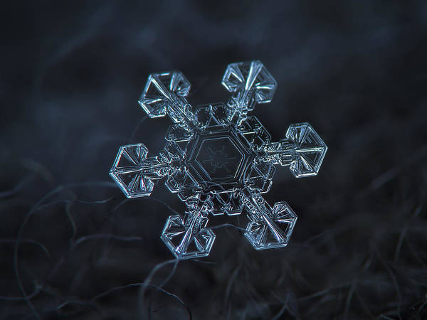 Snowflake Photo - Ice Crown Art Print