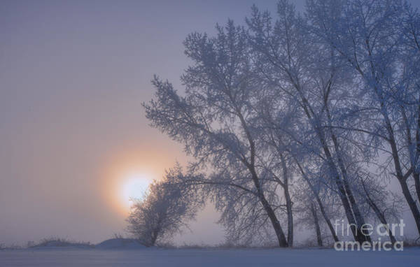 Hoar Photograph - Ice Crystals In The Sky by Dan Jurak