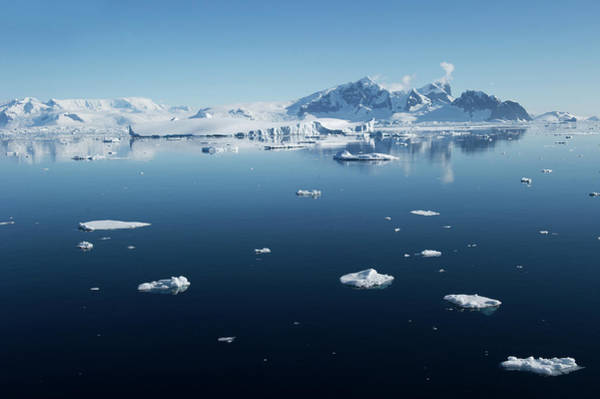 Ice Floe Photograph - Ice Floes In Antarctica by Rebecca Yale