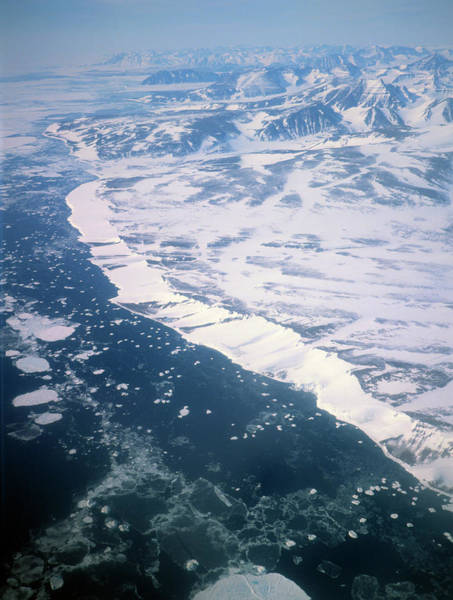 Ice Floe Photograph - Ice Floes Near The East Coast Of Greenland by Simon Fraser/science Photo Library