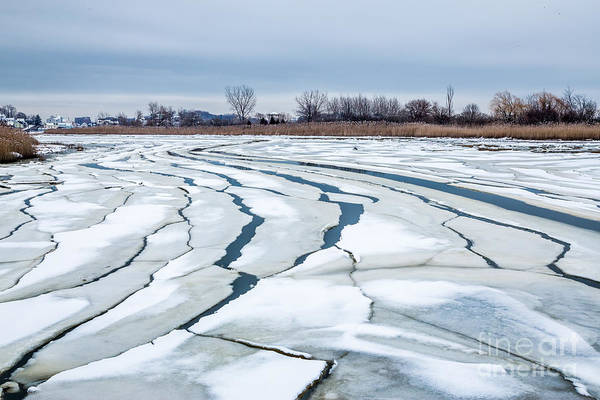 Photograph - Ice Floes On Belle Isle Inlet by Susan Cole Kelly