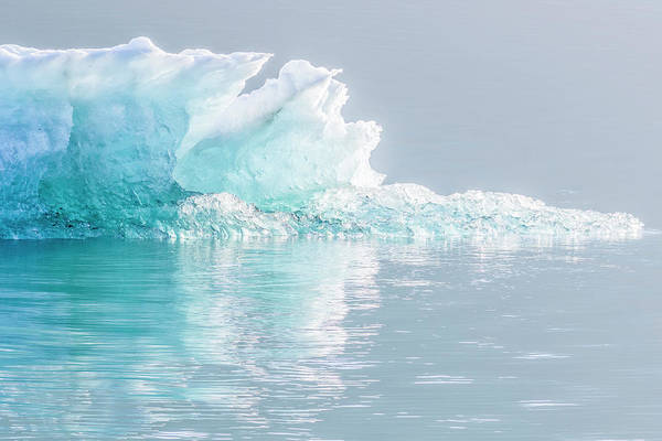 Wall Art - Photograph - Ice In Endicott Arm Fiord by Andrew Peacock
