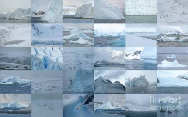 Photograph - Ice by Karla Weber