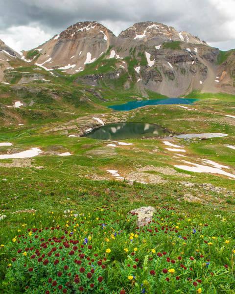 Photograph - Ice Lake Basin Wildflowers by Aaron Spong