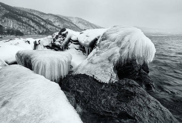 Photograph - Ice Monster by Brad Brizek