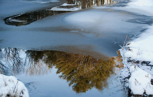 Meadowbrook Photograph - Ice Reflections by Steven Natanson
