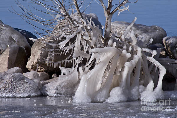 Photograph - Ice Sculptures On Cheney Lake by E B Schmidt