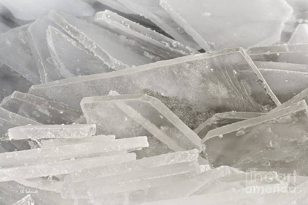 Photograph - Ice Shards Of Cheney Lake by E B Schmidt