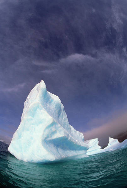 Photograph - Iceberg Adrift Near South Orkney by Colin Monteath