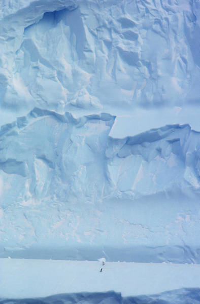 Wall Art - Photograph - Iceberg, Antarctica by Robert Hernandez