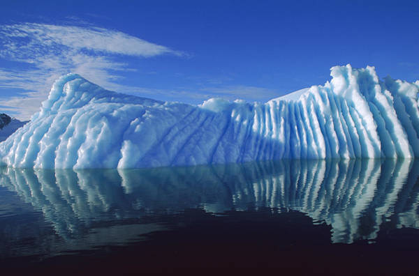 Photograph - Iceberg Reflection Paradise Bay by Colin Monteath