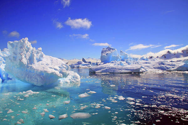 Cold Day Photograph - Icebergs And Ice Flows by Miva Stock