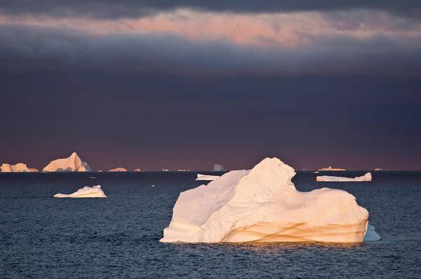 Conserved Photograph - Icebergs At Sunrise, Cape York, West by Daisy Gilardini