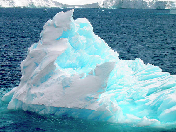Antarctica Photograph - Icebergs Floating In The Sea, Paradise by Miva Stock