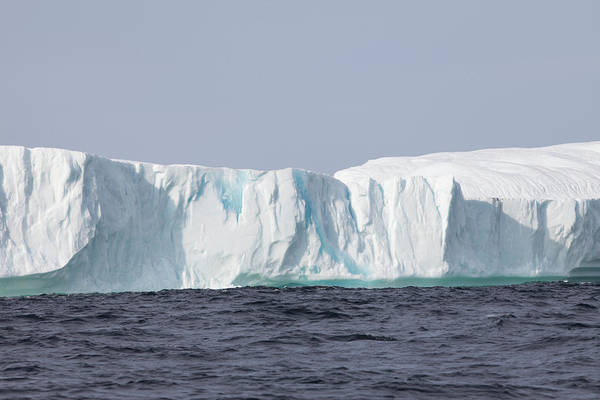 Wall Art - Photograph - Icebergs, Kings Cove, Newfoundland by Greg Johnston