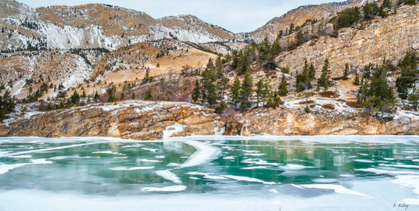 Photograph - Iced Over by Fran Riley
