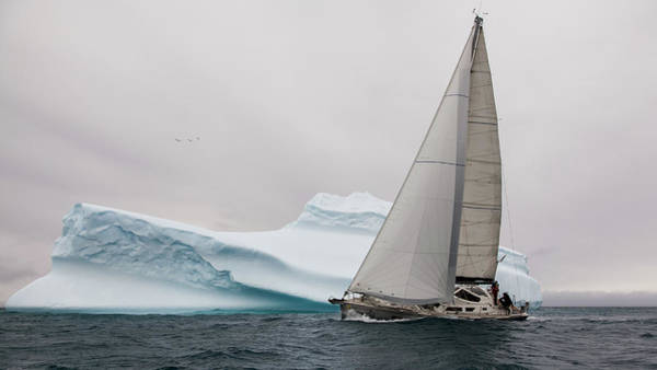 Sail Boat Photograph - Iced by Simon Delvoye