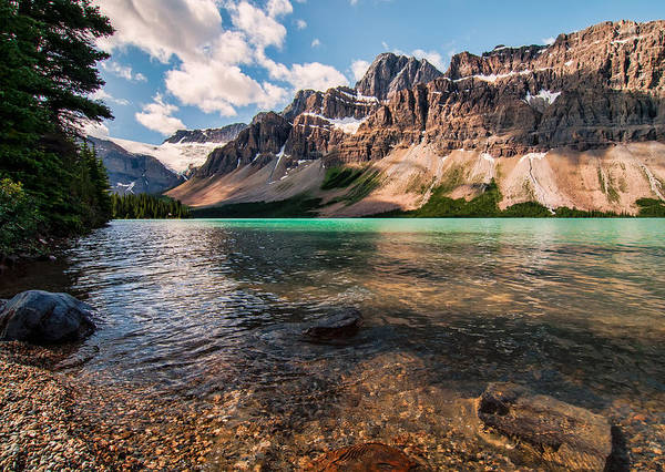 Wall Art - Photograph - Icefields Parkway Bow Lake by James Wheeler
