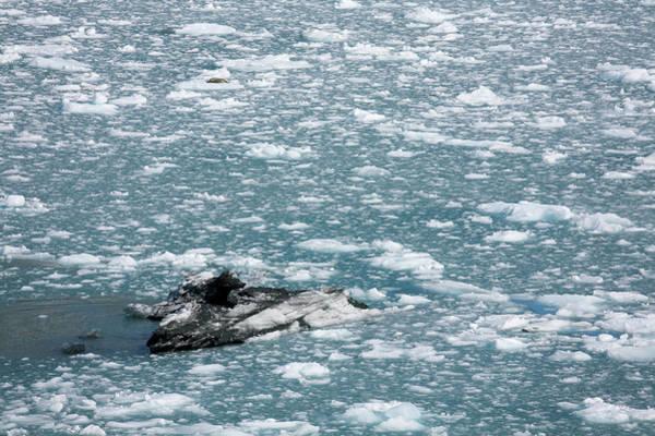 Gulf Of Alaska Photograph - Iceflow Near Hubbard Glacier, Yakutat by Richard Cummins