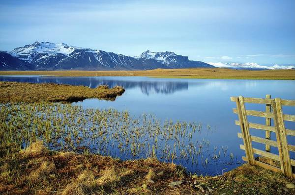 In The Grass Photograph - Iceland by The World Is Beautiful