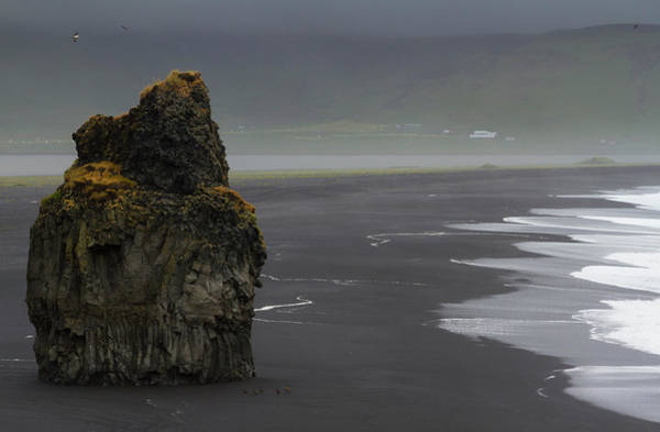 Basalt Columns Photograph - Iceland, Vik Basalt Column Rises by Jaynes Gallery