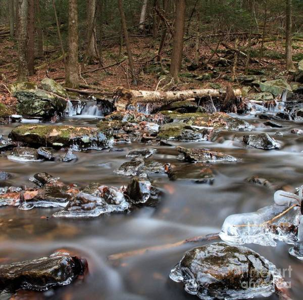 Wall Art - Photograph - Icey Stream by Frank Piercy