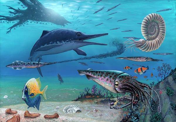 Wall Art - Photograph - Ichthyosaur And Prey by Richard Bizley