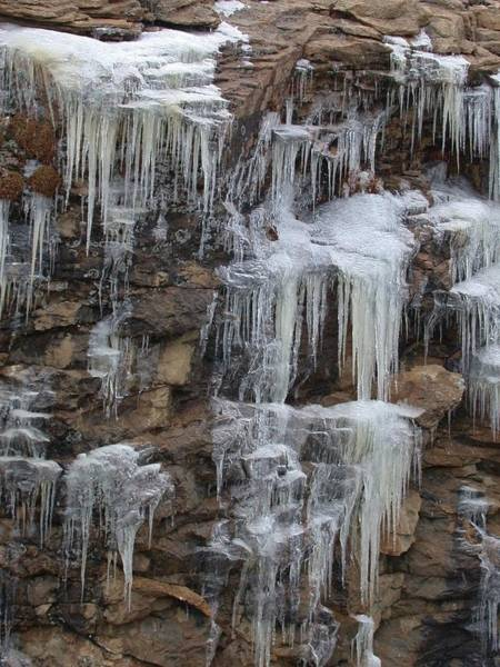 Photograph - Icicle Cliffs by Shane Bechler