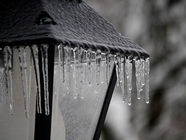 Photograph - Icicles - Lamp Post 3 by Richard Reeve
