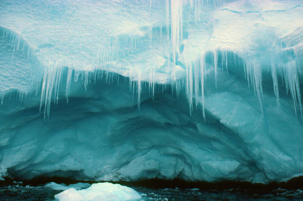 Icicles Wall Art - Photograph - Icicles And Cave On A Coastal Ice Cliff by Simon Fraser/science Photo Library