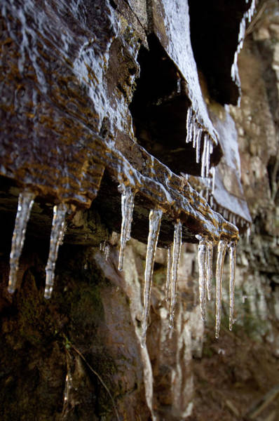 Cloudland Canyon Photograph - Icicles Form On Rock In Cloudland by Andrew Kornylak