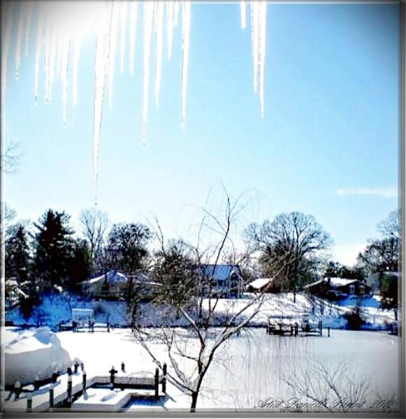 Photograph - Icicles In Md Usa by Danielle  Parent