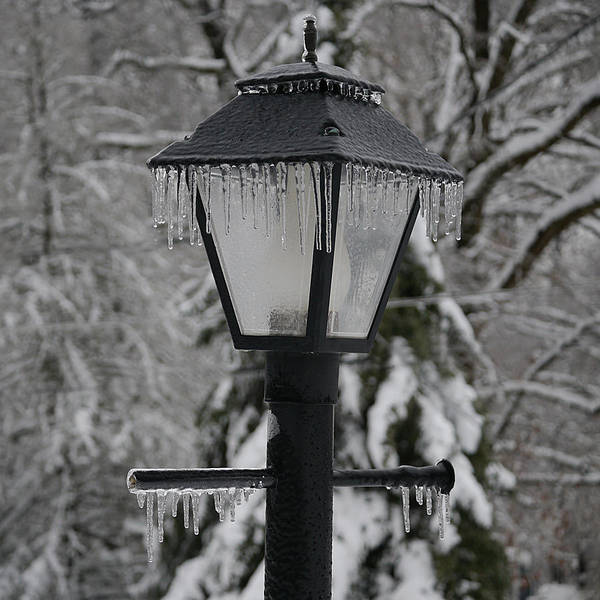 Photograph - Icicles - Lamp Post 1 by Richard Reeve