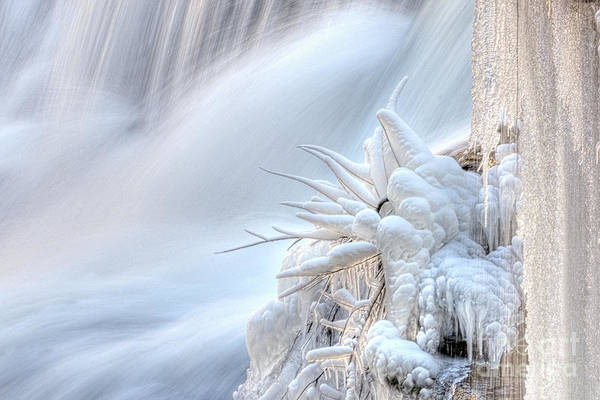 Photograph - Icy Fingers by Wanda Krack