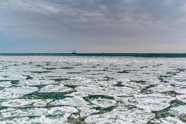Photograph - Icy Harbor by Randy Scherkenbach