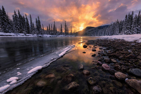Wall Art - Photograph - Icy Morning On Fire by Yun Wang