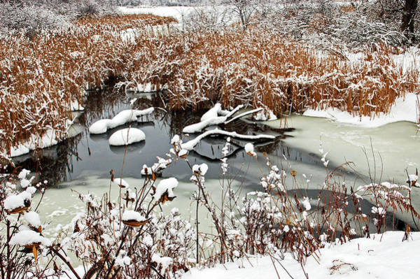 Mendon Photograph - Icy Pond by Aimee L Maher ALM GALLERY