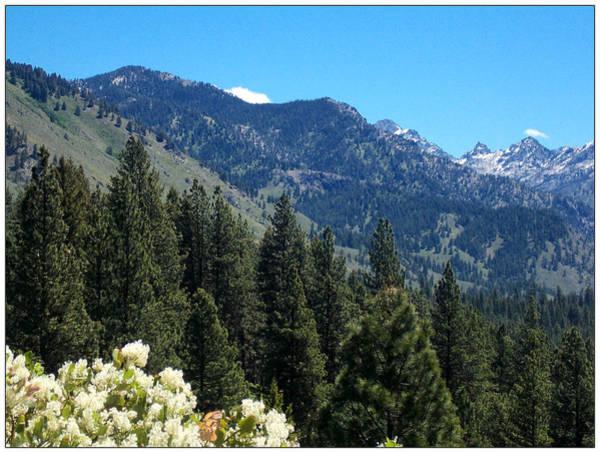 Photograph - Idaho Mountain Side by Susan Kinney