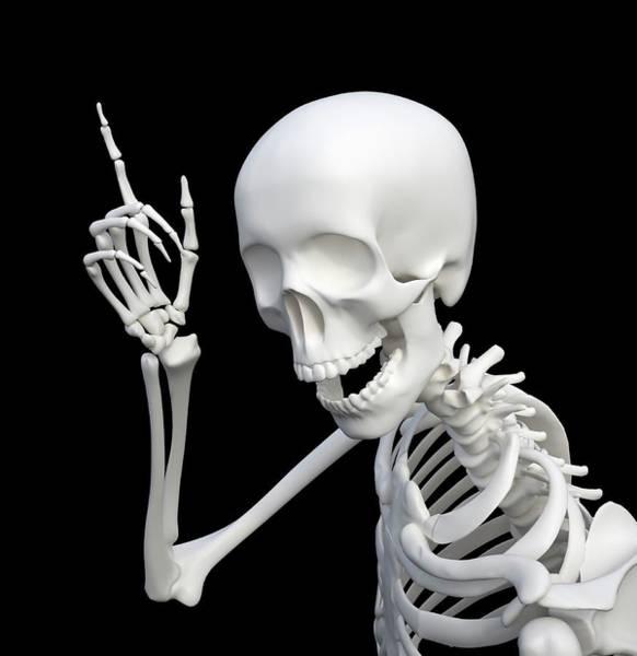 Bone Structure Wall Art - Photograph - Idea by Andrzej Wojcicki/science Photo Library
