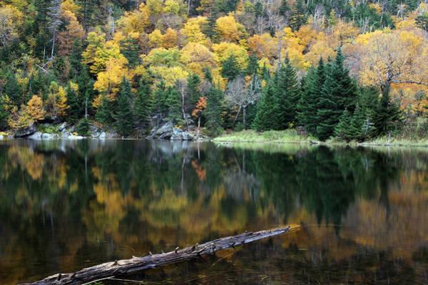 Photograph - Idyllic Vermont Autumn Glory by Juergen Roth
