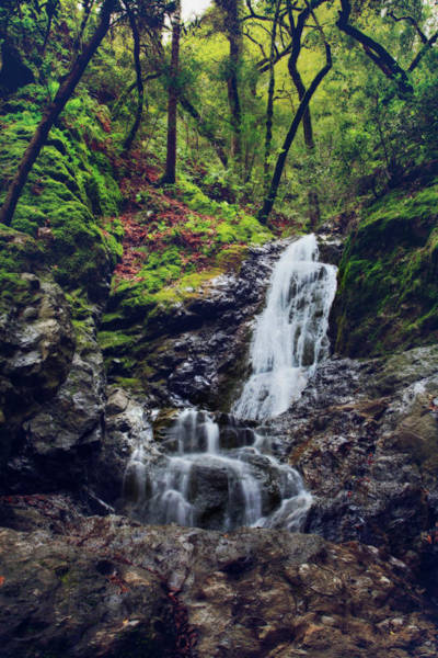 Shutter Speed Photograph - If I Keep Falling by Laurie Search