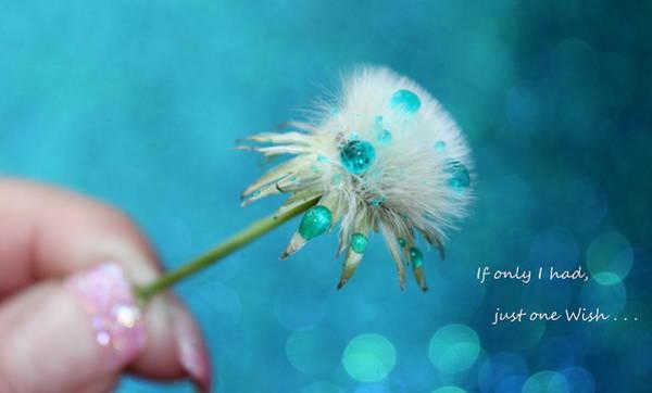 Saying Photograph - If Only by Krissy Katsimbras