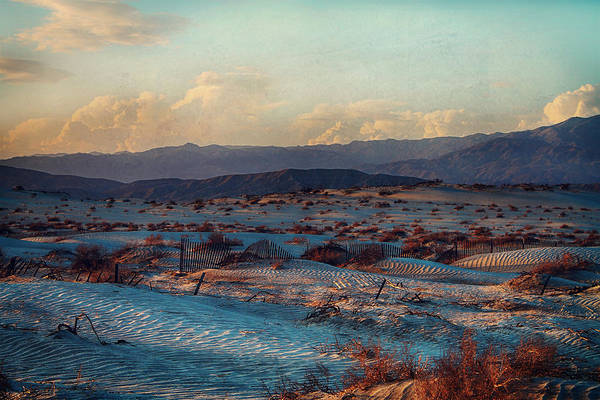 Palm Desert Photograph - If You Could Only See by Laurie Search