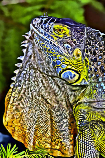 Iguana Digital Art - Iguana 1 by Patrick M Lynch