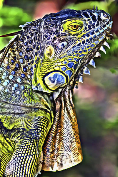 Iguana Digital Art - Iguana 2 by Patrick M Lynch