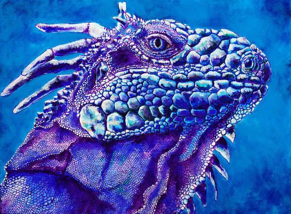 Us Virgin Islands Painting - Iguana Study 3 by Paulene Edwards